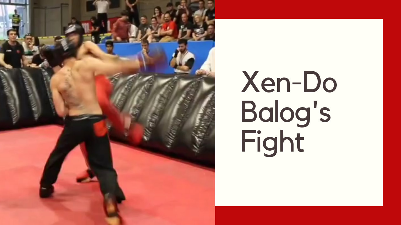 Xen-Do's Balog's Fight at the Spanish Open 2019, Barcelona.